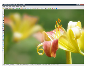 Program ACDSee Photo Manager 3