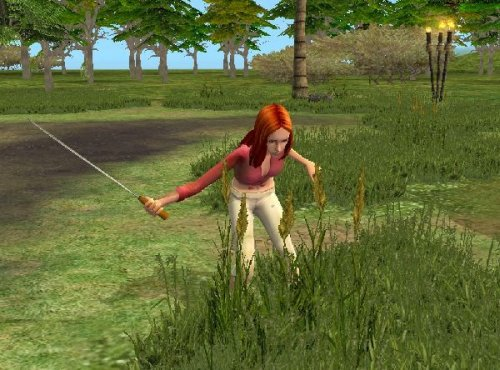 Game The Sims 2: Stories from the uninhabited island 3