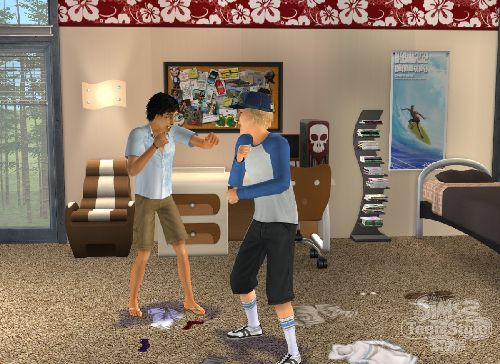 Game The Sims 2: Youth Style 1